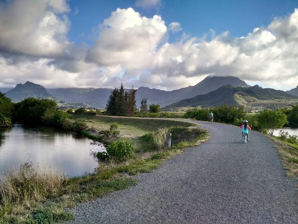 カワイヌイ湿地帯