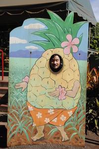 ハワイの歴史と文化 -パインアップル-