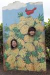 pineappleface