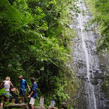waterfallfamilysm